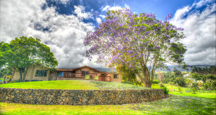 G and Z Upcountry is located in beautiful and peaceful Kula, Maui, Hawaii